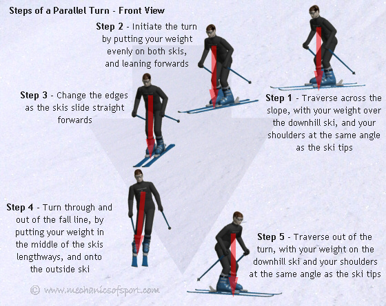 Learn carving skiing